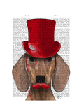 Dachshund with Red Top Hat and Moustache Premium Giclee Print by  Fab Funky