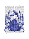 Blue Crab Print by  Fab Funky
