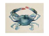Sea Dweller III Prints by Grace Popp