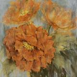 Sunlit Flowers II Giclee Print by Philip Brown