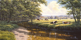 Tranquil Pasture Giclee Print by David Morgan
