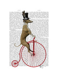 Greyhound on Red Penny Farthing Bike Premium Giclee Print by  Fab Funky