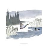 Lodge Landscape IV Prints by Grace Popp