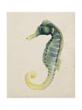 Sea Dweller V Print by Grace Popp