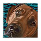 Dlynn's Dogs - Bunsen Posters by Dlynn Roll