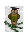 Owl Reading on Branch Prints by  Fab Funky