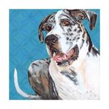 Dlynn's Dogs - Apollo Posters by Dlynn Roll