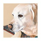 Dlynn's Dogs - Shell Prints by Dlynn Roll