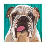 Dlynn's Dogs - Bosco Art by Dlynn Roll