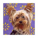 Dlynn's Dogs - Ringo Prints by Dlynn Roll