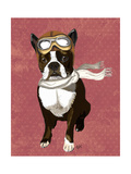 Boston Terrier Flying Ace Premium Giclee Print by  Fab Funky