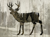 Camouflage Animals - Deer Giclee Print by Tania Bello