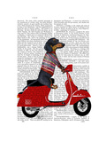 Dachshund on a Moped Premium Giclee Print by  Fab Funky