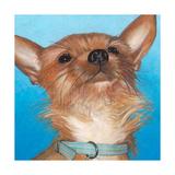 Dlynn's Dogs - Gratitude Art by Dlynn Roll