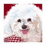 Dlynn's Dogs - Marie Prints by Dlynn Roll