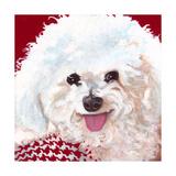 Dlynn's Dogs - Marie Prints by Dlynn Roll
