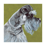 Dlynn's Dogs - Zoee Prints by Dlynn Roll