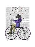 Zebra on Bicycle Premium Giclee Print by  Fab Funky