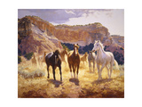 Canyon Trails Premium Giclee Print by Claire Goldrick