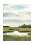 Marsh Landscapes II Prints by Naomi McCavitt