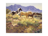 Horses at Big Wash Premium Giclee Print by Claire Goldrick