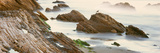 Seagull Perching on the Beach, Gaviota, Santa Barbara County, California, Usa Photographic Print by Panoramic Images