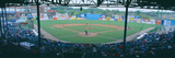 Bill Meyer Stadium, Aa Southern League, Greenville, South Carolina Photographic Print by Panoramic Images