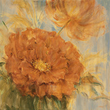 Sunlit Flowers I Giclee Print by Philip Brown