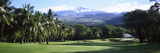 Trees in a Golf Course, Makena Golf Course, Makena, Maui, Hawaii, Usa Photographic Print by Panoramic Images