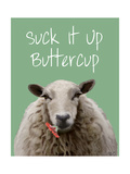 Suck it Up Buttercup Sheep Print Premium Giclee Print by  Fab Funky