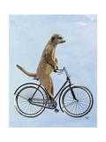 Meerkat on Bicycle Giclee-tryk i høj kvalitet af  Fab Funky