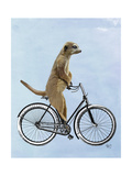 Meerkat on Bicycle Poster by  Fab Funky