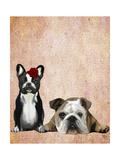 French Bulldog and English Bulldog Premium Giclee Print by  Fab Funky