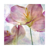 Pink Hyacinth II Prints by Honey Malek
