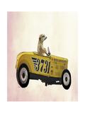 Meerkat in Hot Rod Giclee-tryk i høj kvalitet af  Fab Funky
