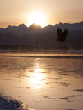 Golden Sunlight over the Chilkat River and Mountains Photographic Print by Jak Wonderly