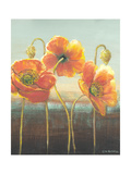 Poppy Tops II Premium Giclee Print by Wendy Russell