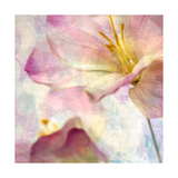 Pink Hyacinth V Print by Honey Malek