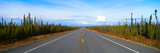 Road to Wrangell, St. Elias National Park, Alaska Photographic Print by Panoramic Images