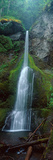 Waterfall in Olympic National Rainforest Photographic Print by Panoramic Images