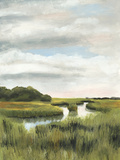 Marsh Landscapes I Prints by Naomi McCavitt