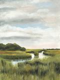 Marsh Landscapes I Posters by Naomi McCavitt