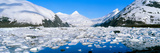 Icebergs in Portage Lake and Portage Glacier, Alaska Photographic Print by Panoramic Images