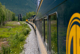 The Alaska Railroad Train Travels Through a Lush Landscape as it Approaches a Bridge Photographic Print by Eric Kruszewski