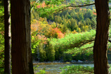 Scenic View of Fall Foliage Along the Shore of Bubble Pond Photographic Print by Darlyne Murawski