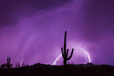 An Energized Lightning Storm Erupts During Monsoon Season Near Tucson, Arizona Photographic Print by Mike Theiss