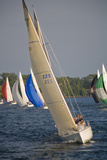 A Sailboat Race in Toronto Harbour Area Photographic Print by Tim Thompson