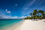 Palm Trees and Clean Beaches on the Caribbean Sea Photographic Print by Jonathan Irish