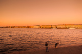 Sunset from the Neva River, State Hermitage Museum, Winter Palace, St. Petersburg, Russia Photographic Print by Green Light Collection