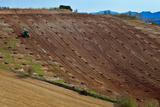 Tractor Preparing a Field, Near Alhama De Granada, Granada Province, Spain Photographic Print by Green Light Collection